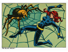 Black Widow Pin Up Print Marvel Avengers