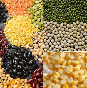 Lentils Peas Pulses Beans Legumes Dry Whole and Split Seeds Indian Dal Moong