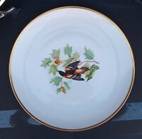 """Hutschenreuther Selb Audubon 13"""" BALTIMORE ORIOLE Charger Bavaria Germany"""