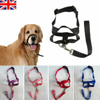 Head Collar Halti Style Training Nose Reigns Stops Dog Pulling Halter Size M
