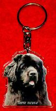 porte-cles chien terre neuve 3 dog keychain llavero perro schlusselring hund
