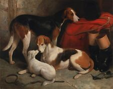 "William Barraud, Fox Hounds, Terrier Dogs, antique art, 1845, 20""x16"" Canvas"