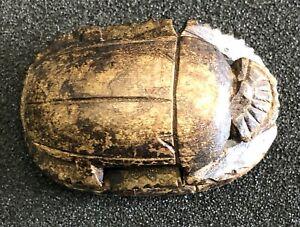 Beetle Stamp Symbol Egypt Antique Emblem Protector For Living Clean Copy