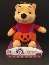 Winnie the Pooh Mattel Fisher Price plush with pumpkin costume Halloween