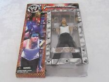 Jakks Pacific WWE WWF Raw 10th Tenth Anniversary Jeff Hardy Action Figure