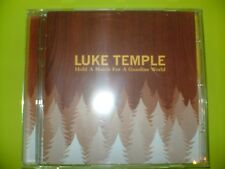 LUKE TEMPLE -- HOLD A MATCH FOR A GASOLINE WORLD