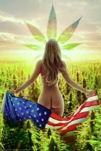 Nude Model Holding Flag In A Field Of Weed 24 x 36 Poster For The Man Cave
