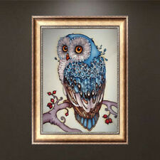 5D Diamond Painting Cartoon Owl Punto croce Home DecorWQI