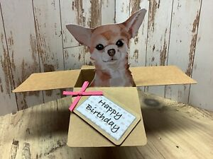 Chihuahua Dog Birthday card,  3D Pop Up  Box Card, Handmade