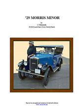 1929 MORRIS- CROSS STITCH CHART