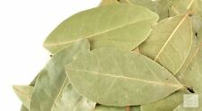 Bay Laurel leaf  whole  2 oz wiccan pagan witch herbs magick ritual
