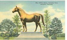 LEXINGTON,KENTUCKY-MAN O WAR STATUE-LINEN-FARAWAY FARM-(STATUE-160)