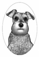 """4""""X6 Schnauzer static cling etched glass window decal"""