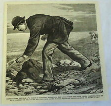 1883 magazine engraving ~ MAN LIFTS PIECE OF PLASTERBOARD FROM UNDER ROCK