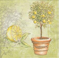2 Serviettes en papier Agrume Citron Citronnier Vert Paper Napkins Lemon Tree