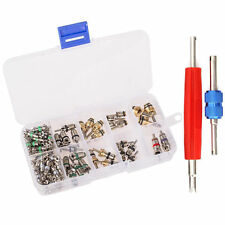 102pcs A/C Air Conditioning Valve Core Car Assortment R134A R12 W/ Remover Kit