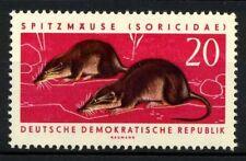 DDR 1962 SG E610 Nuovo ** 100%