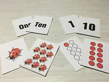 Ladybug Numbers 4 ways - Math -Laminated Cards Set Counting. 1-10