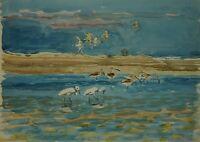 Karl Adser 1912-1995 Tunisia 1969 Djerba Mediterranean North Africa Water Birds