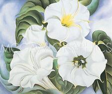 "O'KEEFFE GEORGIA - JIMSON WEED, 1935 - ART PRINT POSTER 11"" x 14"" (254)"