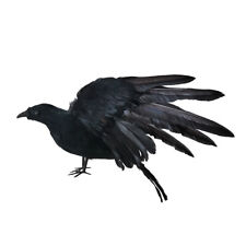 Realistic Crows Extra Large Black Feathered Crow Halloween Decorations Birds