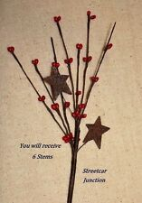 """set of 6 -- 12"""" long RED Pip Berry Stems / Picks with Rusty STARS"""