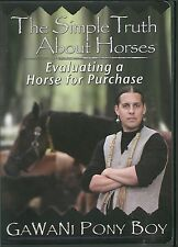 THE SIMPLE TRUTH ABOUT HORSES  EVALUATING A HORSE FOR PURCHASE - GAWANI PONY BOY