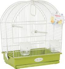 Articles verts perruche pour oiseau