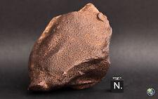 METEORITE GEBEL KAMIL, IRON ATAXITE - LARGE INDIVIDUAL 668 g