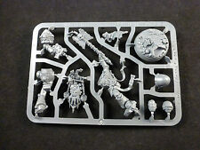40K Space Marine Reclusiam Command Squad Chaplain on Plastic Frame