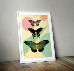 Colourful Butterfly Print Vintage Style Retro art A3 A4 A5 nature poster
