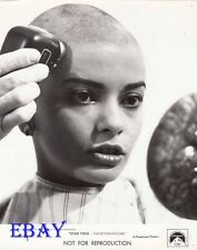 Persis Khambatta head shaved VINTAGE Photo Star Trek The Motion Picture