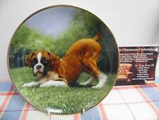 "Danbury Mint Plate by Simon Mendez "" Bottoms Up "" The Boxer Dog"