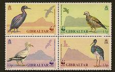 GIBRALTAR :1991 WWF/ Birds block SG 655a unmounted mint