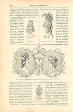 Perruque Coiffure Chignon à Tresses Chapeaux Casque Mode  GRAVURE OLD PRINT 1892