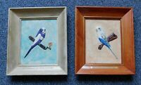 Vintage 1965 Mid Century MOD Bird Parrot 3D Painting Picture Wooden Frame