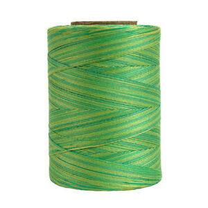 #831~STAR COTTON MACHINE QUILTING SEW THREAD~VARIEGATED~SPRING MEADOW GREEN