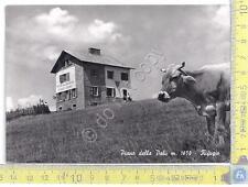 Angolo Terme - Piano della Palù - Anni 60 - Sixties - Cartolina - Postcard