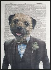 Border Terrier Print Vintage Dictionary Page Wall Art Picture Humanised Dog