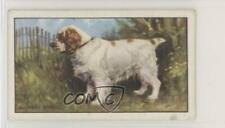 1936 Gallaher Dogs Series 1 Tobacco The Clumber Spaniel #26 kj8