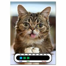 Baby Safe Ideas Meow Kitten Nursery Room Thermometer - Easy Read