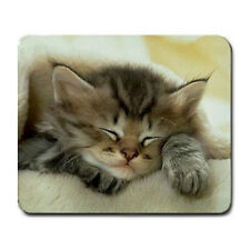 Kitten Large Mousepad Mouse Pad Great Gift Idea