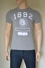NUOVO Abercrombie & Fitch Hoffman Mountain distrutto GREY TEE T-SHIRT L