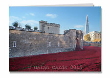 Tower of London Poppies Greeting Card (Pack 10)