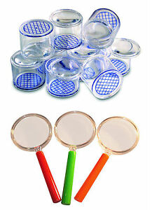 Magnifying Bug Pots,Pack of 5 + 5 Plastic Magnifying Glasses s + 5 Spotter Cards