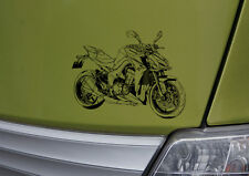 Z1000 Bj2014 Grafik, Auto-Motorrad-Aufkleber für den Kawa-Fahrer