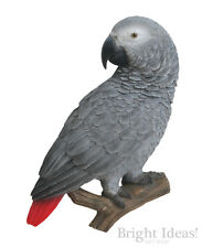Vivid Arts - REAL LIFE EXOTIC BIRD WALL PLAQUE - African Grey Parrot