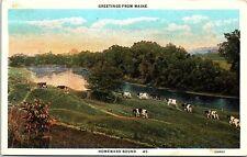 1920s Postcard Greetings from Maine Homeward Bound Cows River Calais Postmark ME