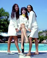 THE RONETTES - 8X10 PUBLICITY PHOTO (AA-266)