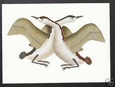 KAVAVAOW MANNOMEE Mating Geese INUIT NATIVE BIRDS ART ARTWORK POSTCARD